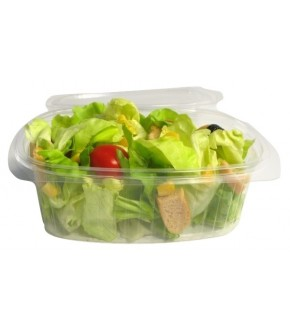 Disposable container in OPS with hinged lid DELIBOX
